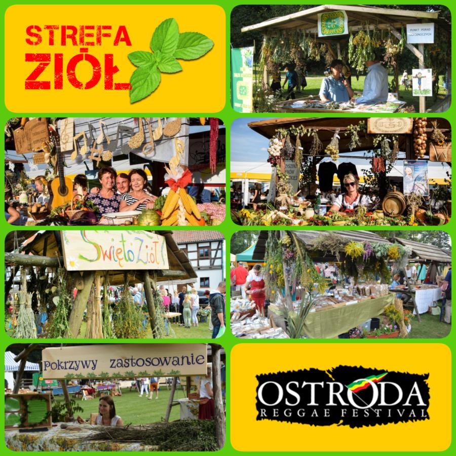 stoiska ziołowe ORF 2019